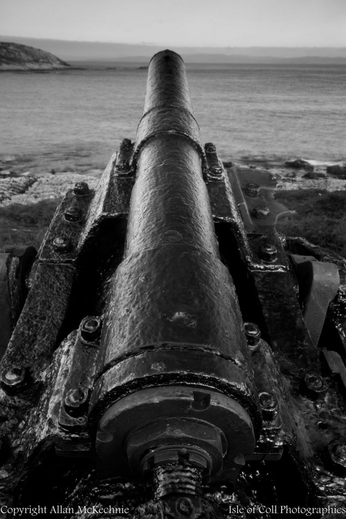 from-the-deep-gun-from-the-wreck-of-the-nevada-014